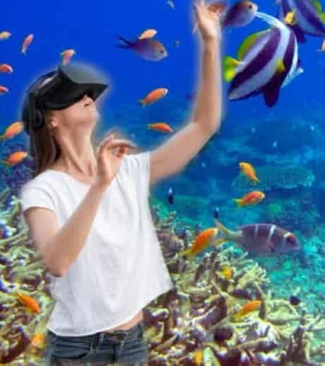 virtual reality and augmented reaity